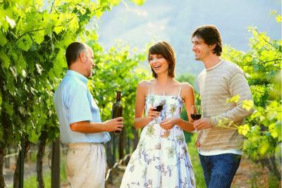 7 Stops to Include on Your Nashville Winery Tour